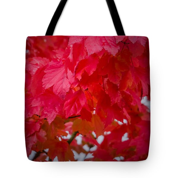 Ready To Fall Tote Bag