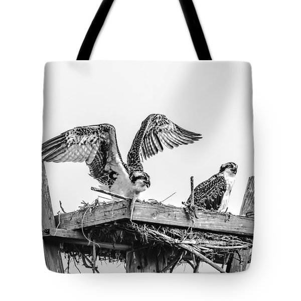 Ready To Fly Bw Tote Bag