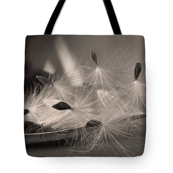 Ready To Fly Tote Bag