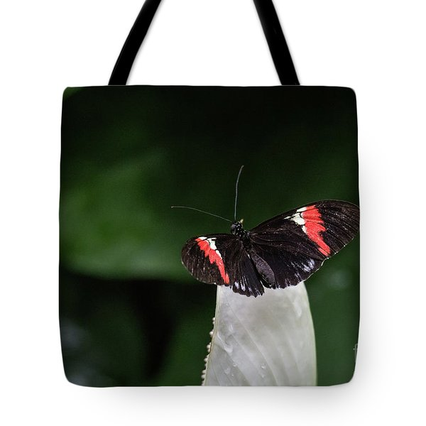 Ready To Launch Tote Bag