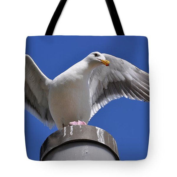 Ready To Soar Tote Bag