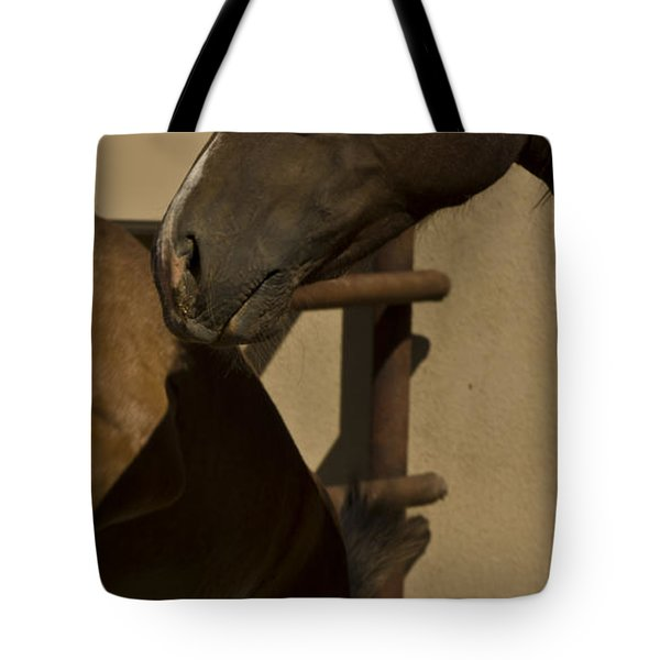 Tote Bag featuring the photograph Rebellion by Catherine Sobredo