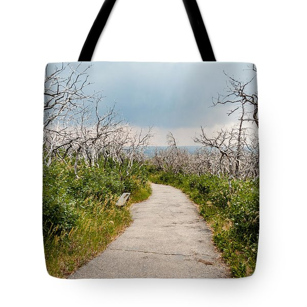 Tote Bag featuring the photograph Rebirth by Jay Stockhaus