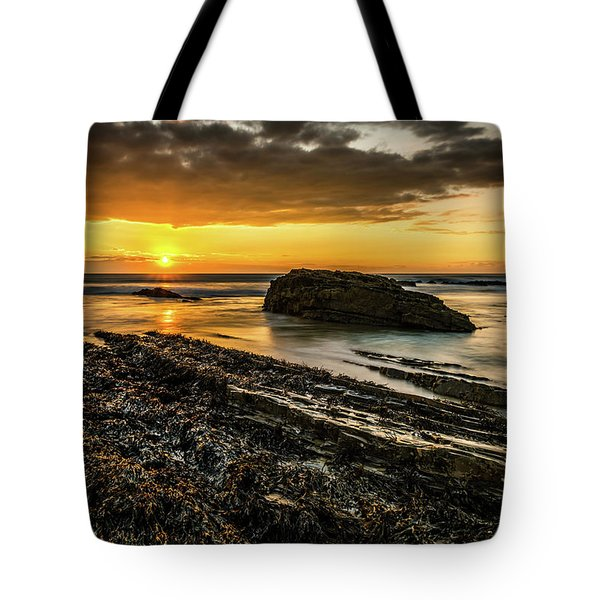 Tote Bag featuring the photograph Receding Tide by Nick Bywater