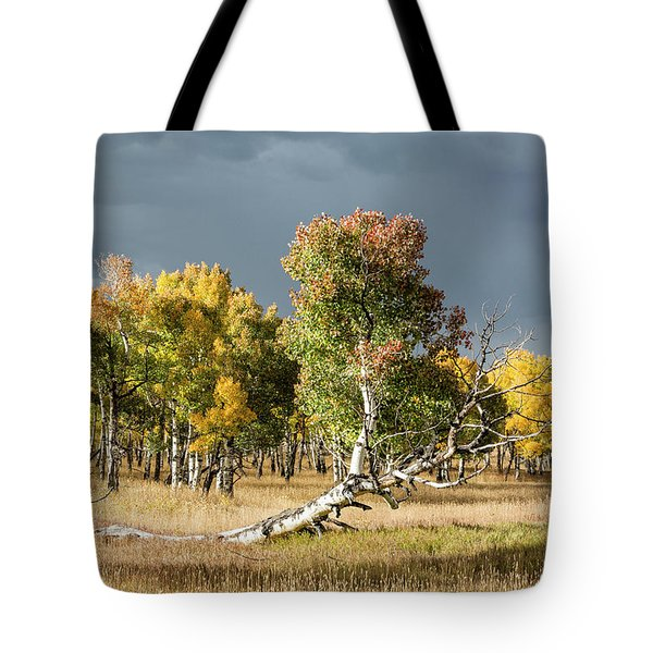 Reclining Aspen Tote Bag