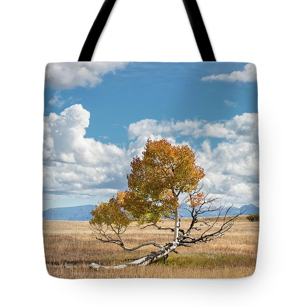 Reclining In The Sun Tote Bag
