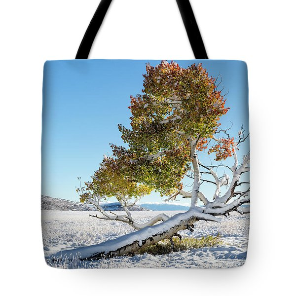 Reclining Tree With Snow Tote Bag