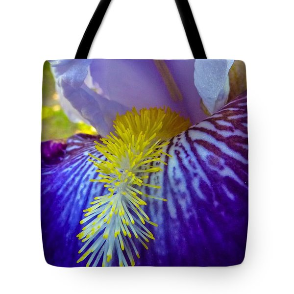 Recollection Spring 1 Tote Bag by Jean Bernard Roussilhe