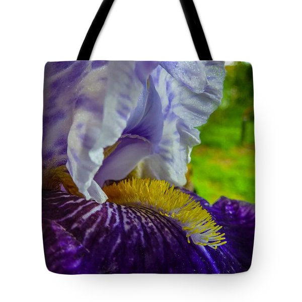 Recollection Spring 4 Tote Bag