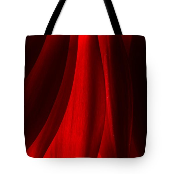 Red Abstract Of Chrysanthemum Wildflower Tote Bag