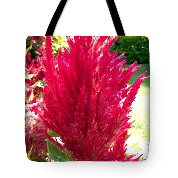 Tote Bag featuring the photograph Red by Alohi Fujimoto