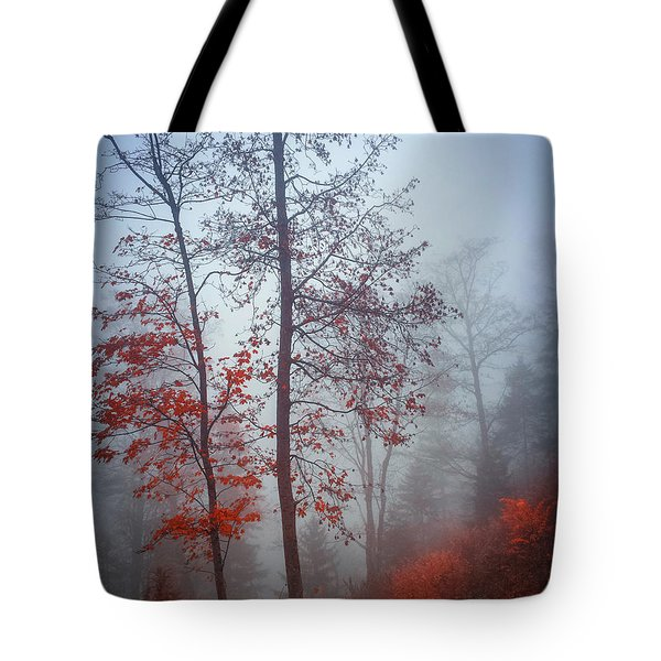 Tote Bag featuring the photograph Red And Blue by Elena Elisseeva