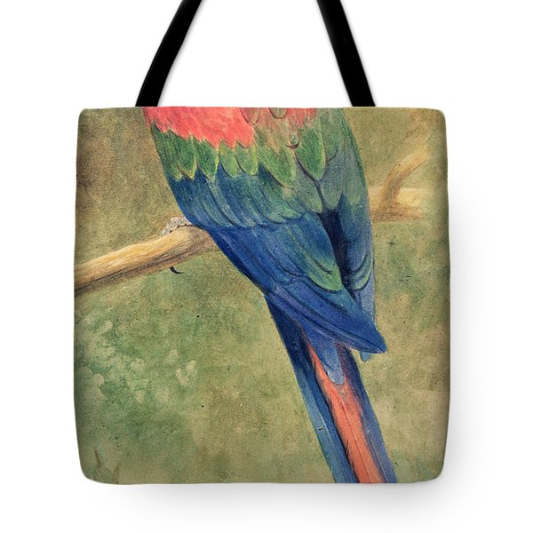 Red And Blue Macaw Tote Bag by Henry Stacey Marks