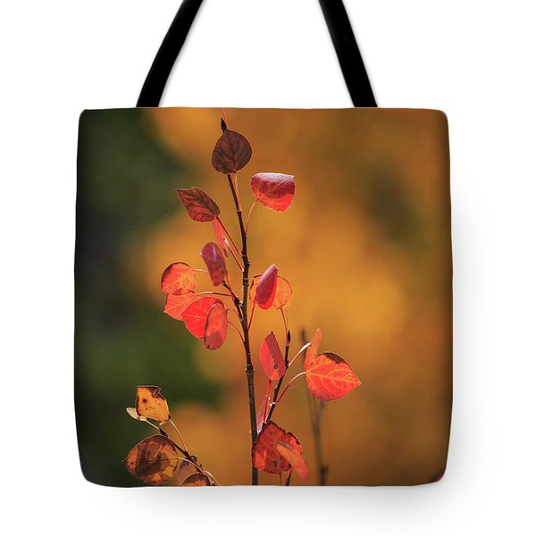 Tote Bag featuring the photograph Red And Gold by David Chandler