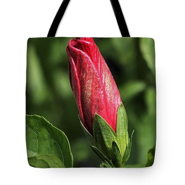 Tote Bag featuring the photograph Red And Gold Hibiscus Bud by Sheila Brown