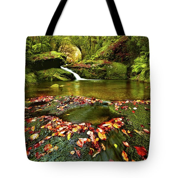Red And Green Tote Bag by Jorge Maia