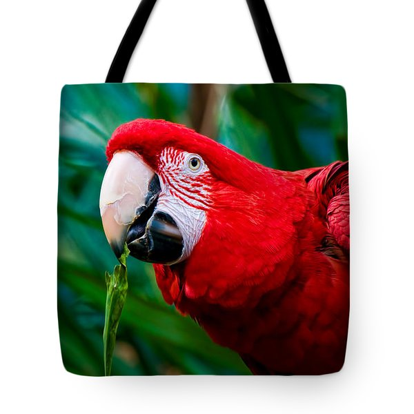 Red And Green Macaw Tote Bag