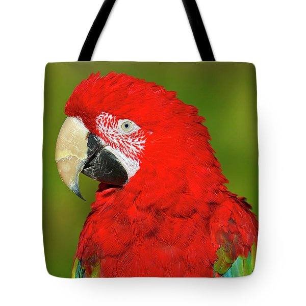 Tote Bag featuring the photograph Red And Green by Tony Beck