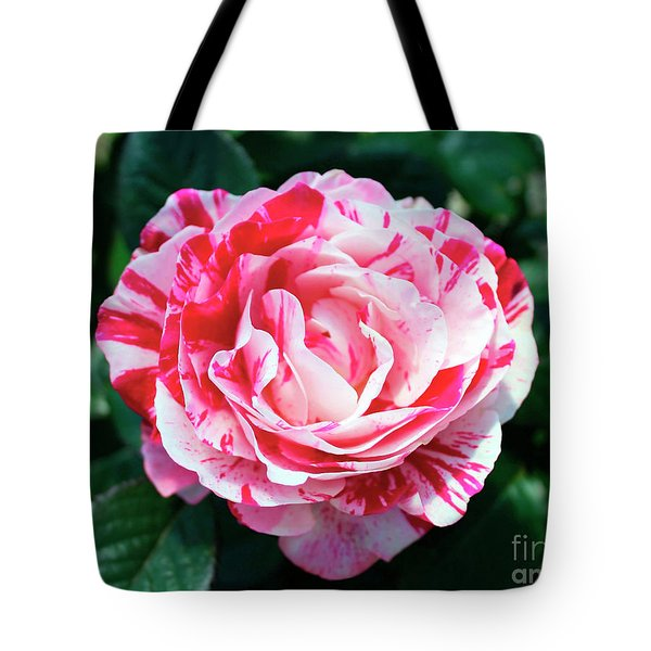 Red And Pink Floral Candy Rose Garden 490 Tote Bag