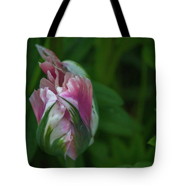 Red And White Bud 1 Tote Bag by Timothy Latta
