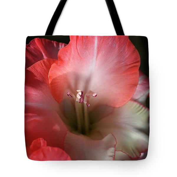 Red And White Gladiolus Flower Tote Bag by Joy Watson