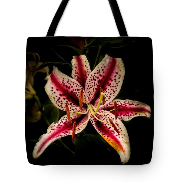 Tote Bag featuring the photograph Red And White Lily by Jay Stockhaus