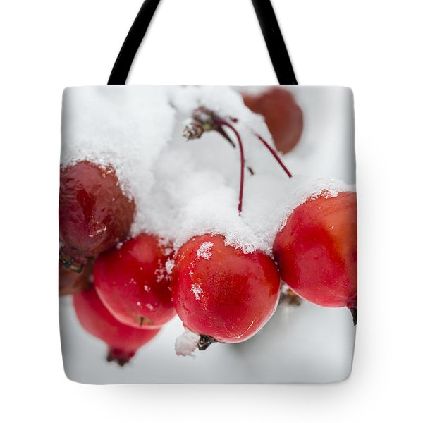Tote Bag featuring the photograph Red And White by Sebastian Musial