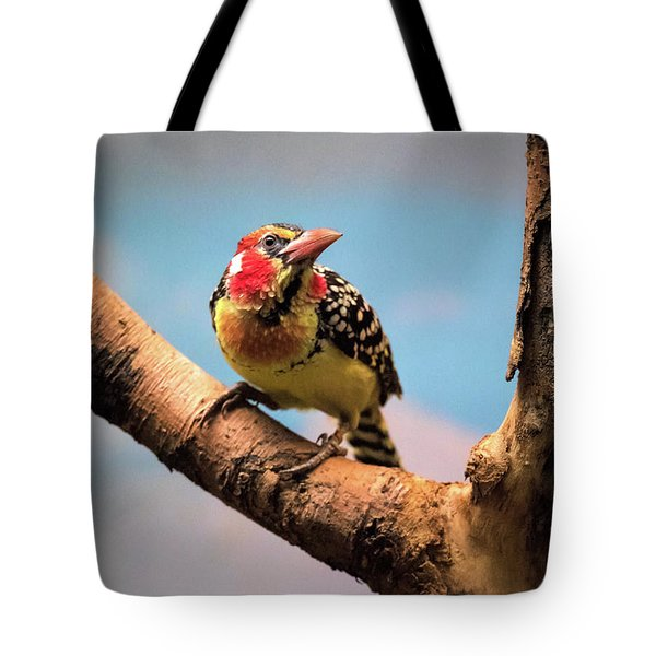 Red And Yellow Barbet Tote Bag
