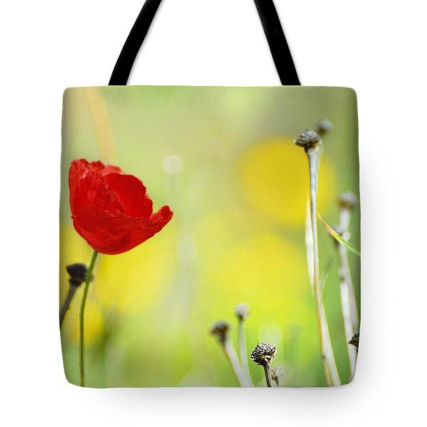 Red And Yellow Tote Bag by Guido Montanes Castillo