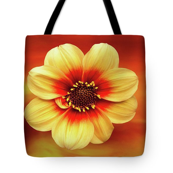 Red And Yellow Inspiration Tote Bag