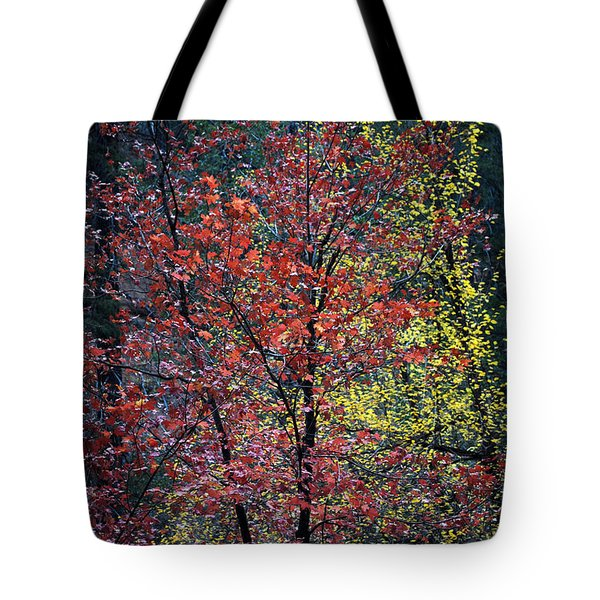 Red And Yellow Leaves Abstract Vertical Number 1 Tote Bag by Heather Kirk