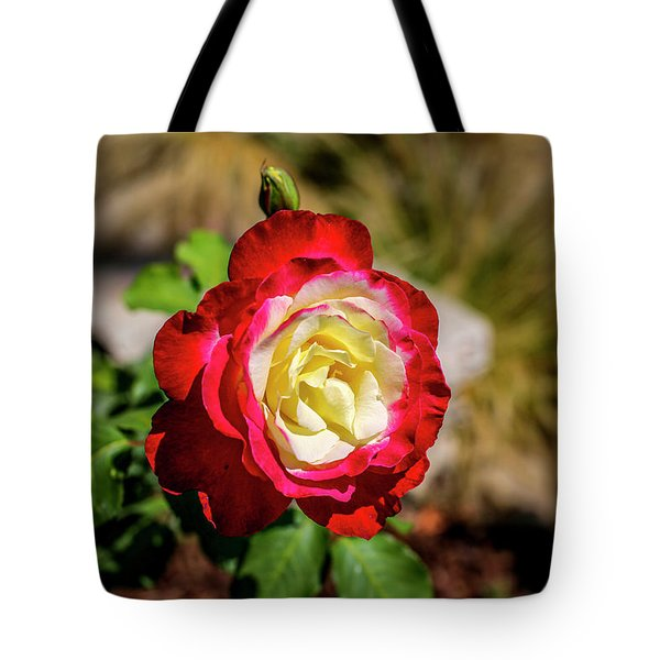 Red And Yellow Rose Tote Bag