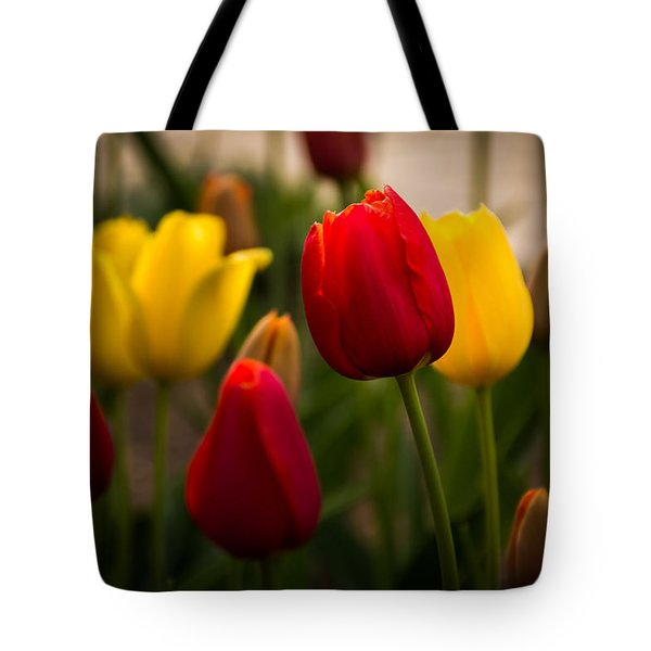 Red And Yellow Tulips Tote Bag