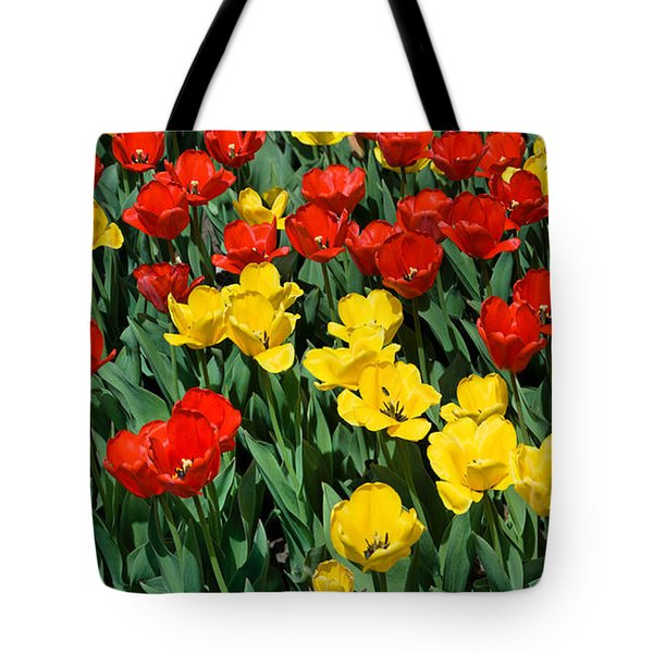 Red And Yellow Tulips  Naperville Illinois Tote Bag by Michael Bessler