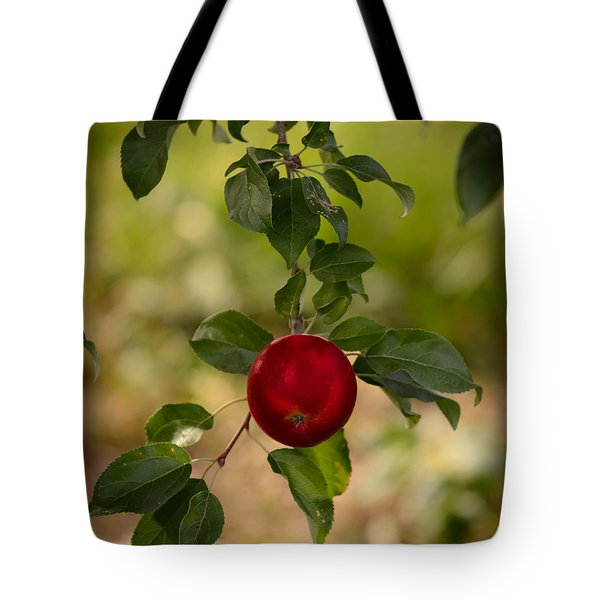 Red Apple Ready For Picking Tote Bag