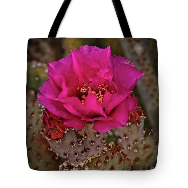Tote Bag featuring the photograph Red Beavertail Cactus Bloom by Robert Bales