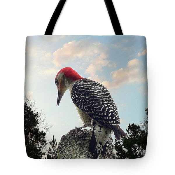 Red-bellied Woodpecker - Tree Top Tote Bag by Al Powell Photography USA