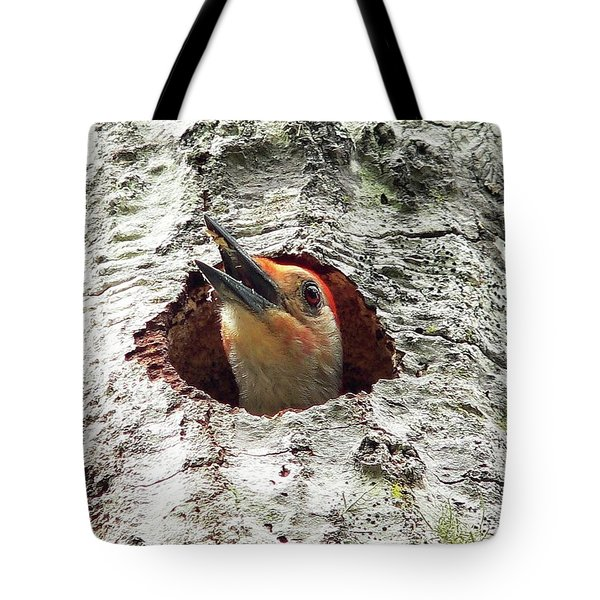 Red-bellied Woodpecker 03 Tote Bag by Al Powell Photography USA