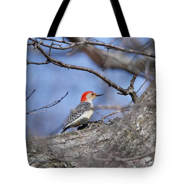 Tote Bag featuring the photograph Red-bellied Woodpecker 1134 by Michael Peychich