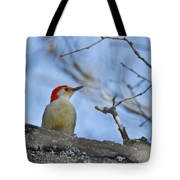 Tote Bag featuring the photograph Red-bellied Woodpecker 1137 by Michael Peychich