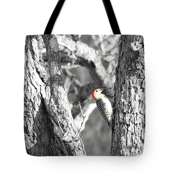 Tote Bag featuring the photograph Red-bellied Woodpecker by Benanne Stiens