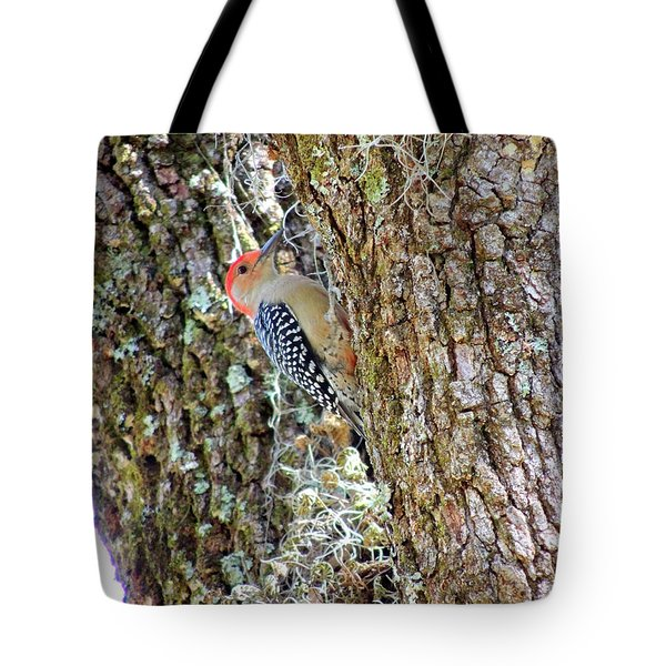 Red-bellied Woodpecker By Bill Holkham Tote Bag by Bill Holkham