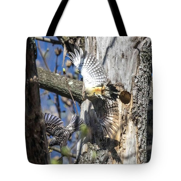 Red Bellied Woodpecker Chasing An Attacking Starling Tote Bag