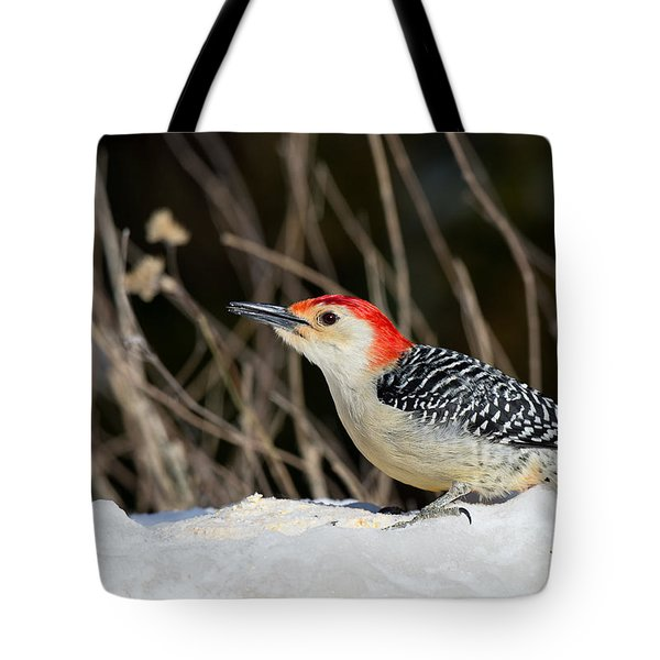 Red-bellied Woodpecker In The Snow Tote Bag by Angel Cher