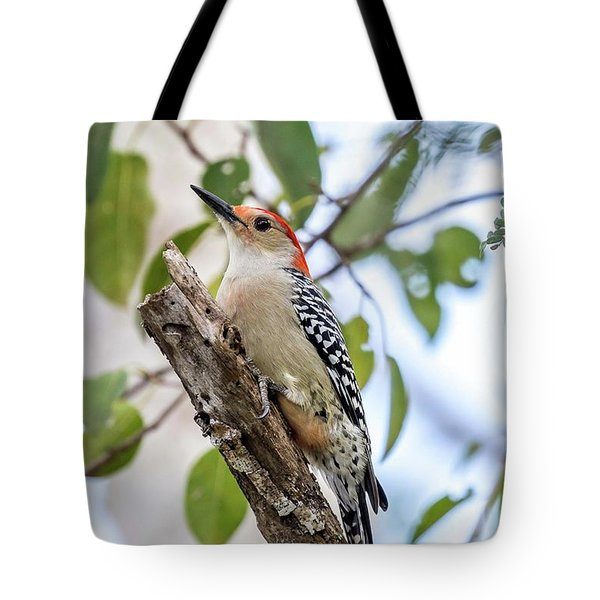 Tote Bag featuring the photograph Red-bellied Woodpecker by Paul Schultz