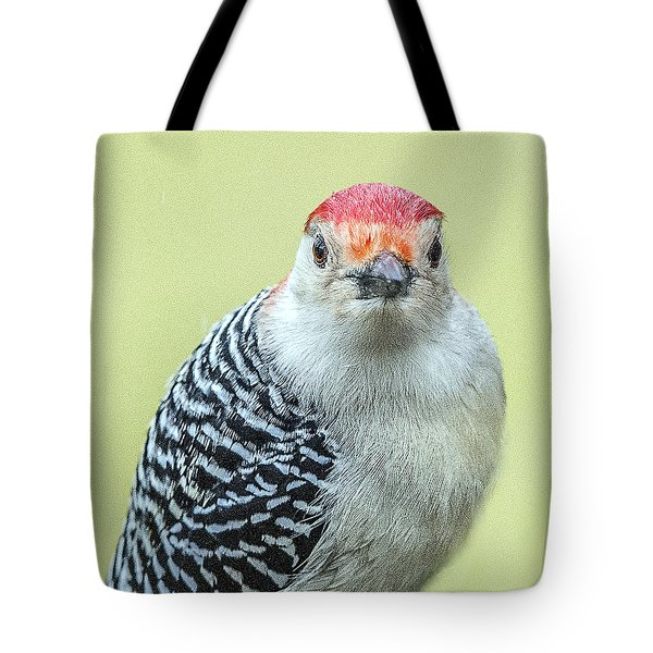 Red Bellied Woodpecker Portrait Tote Bag