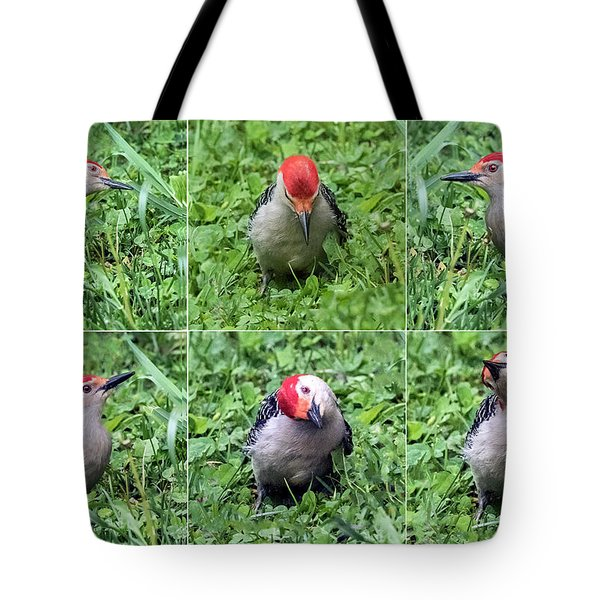 Red-bellied Woodpecker Posing In The Grass Tote Bag