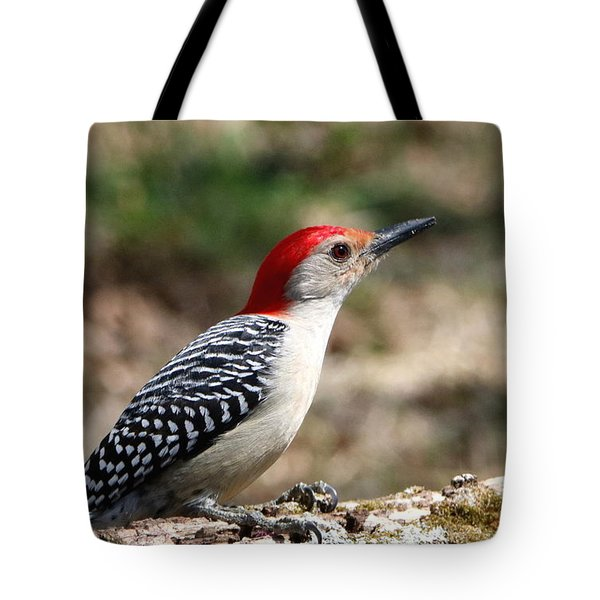 Red-bellied Woodpecker Tote Bag by Sheila Brown