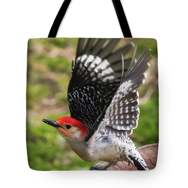 Tote Bag featuring the photograph Red Bellied Woodpecker Take Off by Terry DeLuco