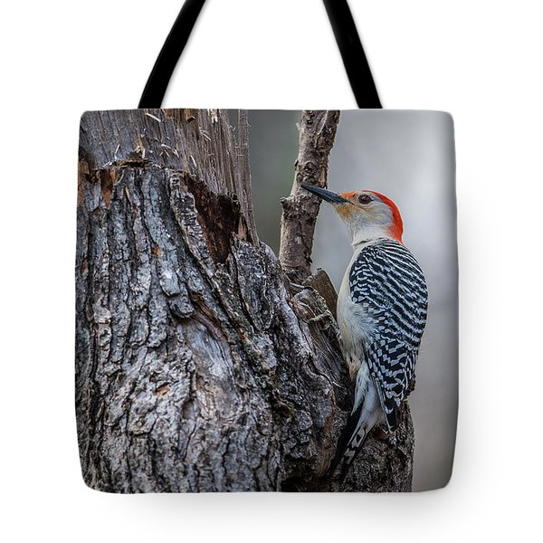 Tote Bag featuring the photograph Red Bellied Woody by Paul Freidlund